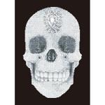 Broderie Diamant kit intermédiaire Crâne de cristal