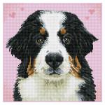 Broderie Diamant kit Squares intermédiaire Zuzu le chien + cadre