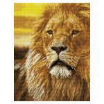 Broderie Diamant kit Squares intermédiaire Roi lion + cadre